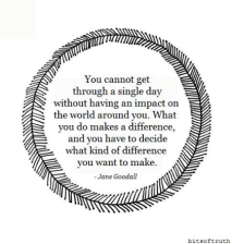 Make a difference - Jane Goodall